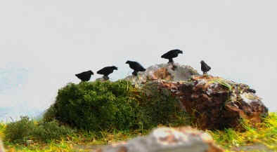 Crows2.JPG (32654 Byte)
